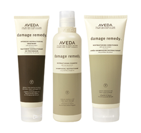 damage remedy aveda