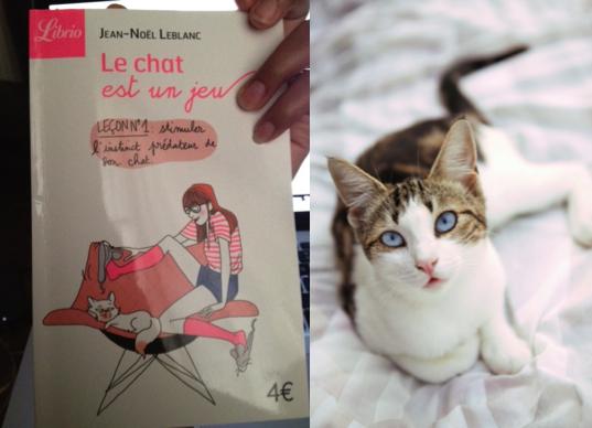 Le chat est un jeu - Editions Librio