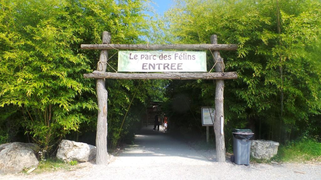 accueil_parc_des_felins