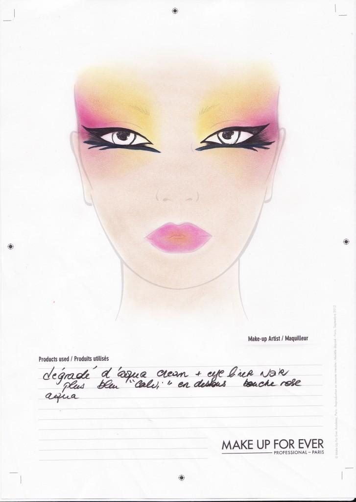 Face Chart2