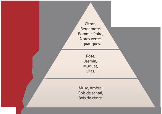 pyramide_olfactive_fr